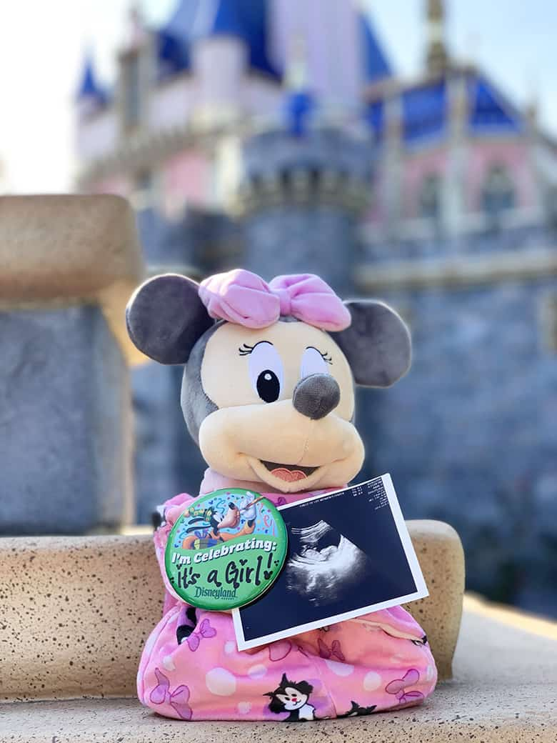 it's a girl gender announcement Disneyland